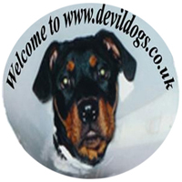 Devildogs Home Page