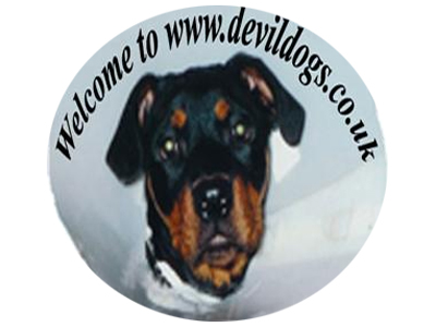 Devildogs : Lancashire and England Cricket Supporters